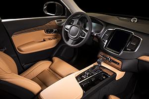 Auto interior color