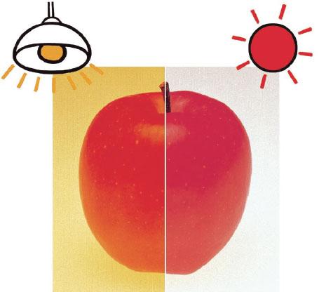 Elementos que afetam a aparência da cor