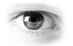 Causas y efectos de la deficiencia de la vision del color