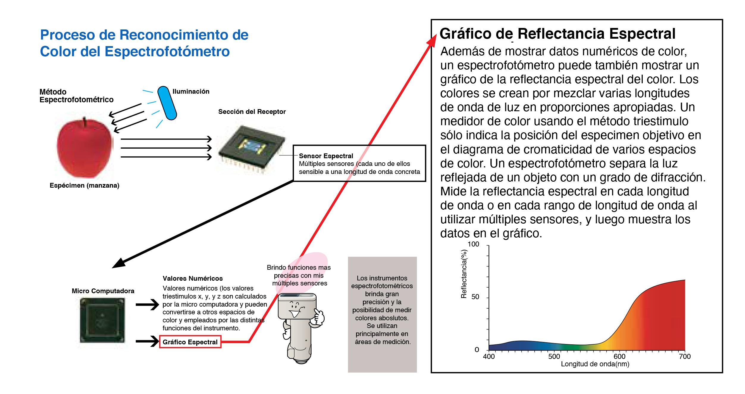 ¿Cómo funciona un espectrofotómetro?