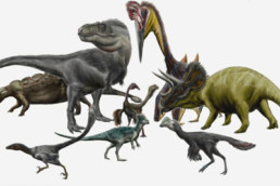 Descobertas novas pistas para a cor real dos dinossauros