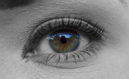 Human Eyesight Capable of Verifying Nanoscale Variations in Color