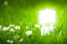 LED Market Still Has Incredible Energy Saving Potential
