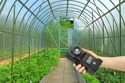 Measuring Light in Greenhouses with the CL-500A Illuminance Spectrophotometer