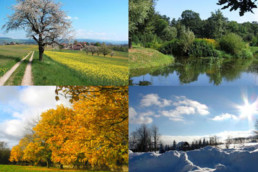 Do the Seasons Affect How We Perceive Color?