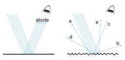 Componente Especular Incluido (SCI) vs. Componente Especular Excluido (SCE)
