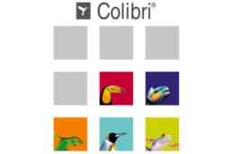 Por que você deve usar nosso Software de Gestão de Cor Colibri