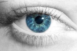 ¿Qué determina el color de sus ojos?