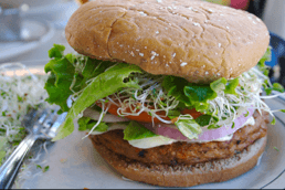 Measuring Colors in Vegan Burgers