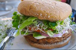 Measuring Colors in Vegan Burgers