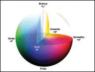 Componentes para a Padronização do Processo de Qualidade de Cor